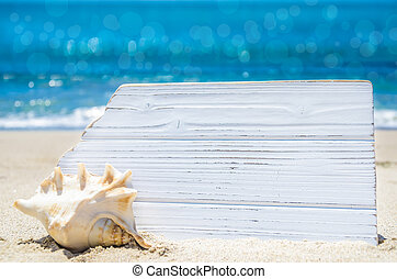 White wood board with seashell on the sandy beach - Empty...