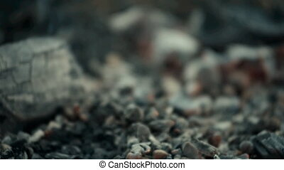 Coals shot with a light blur. Fire theme creative abstract...