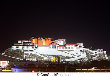 the potala palace closeup at night