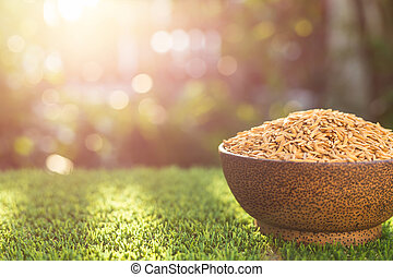 Thai yellow paddy rice in bowl on green grass with sunlight...