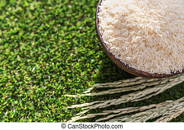 Thai jasmine rice in bowl on green grass background - Close...