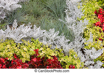 Background - a flower bed with flowers of different colors