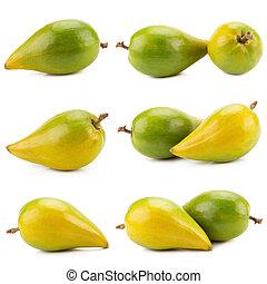 Egg fruit, Canistel, Yellow Sapote, Pouteria lucuma. - Egg...