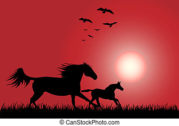 Horses - Silhouette of two horses skipping on a decline