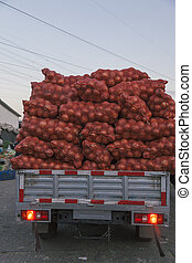 21,Dec, 2014 Beijing China. Onions in red plastic mesh sacks and bags in grid on a car