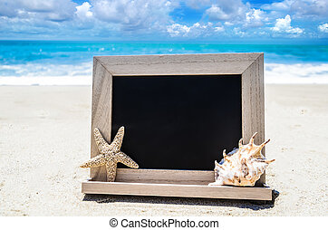 Black wood chalkboard with seashell and starfish on the...