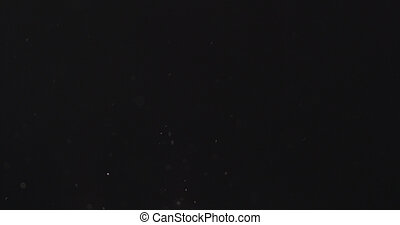 dust particles fly in the air over black background, 4k...