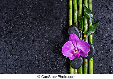 Spa concept with zen stones, orchid flower and bamboo - Spa...