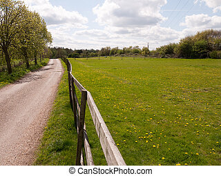 A Gorgeous Green Field and Blue Skies with White Clouds, As well as lots and many Yellow Dandelions in and on the grass in the spring sunlight and head, looking beautiful and powerful with a gate and wooden fence runing along with a small shed or barn in the top right corner