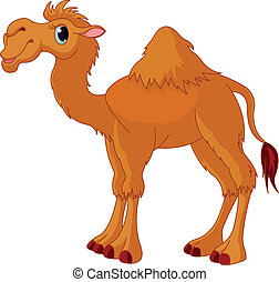 Camel - Illustration of cute funny camel