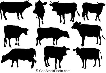 Cow Silhouette vector illustration