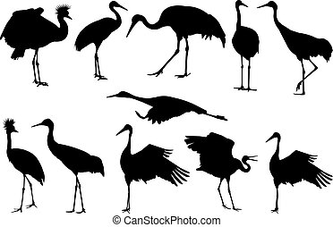 Crane Silhouette vector illustration