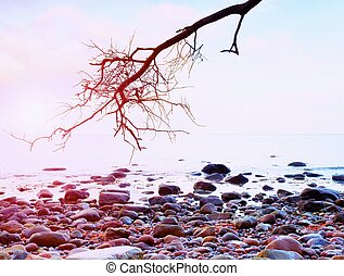 Romantic atmosphere, colorful sunset at sea. Stony beach...