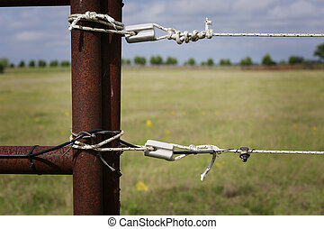Electric fence - Farming: fragment of professionally...