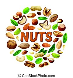 Cartoon Nuts Round Concept - Cartoon nuts round concept with...