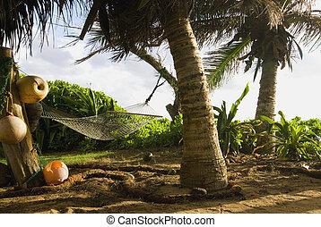 Tropical Hammock - Empty Hammock in Lush Tropical Setting...