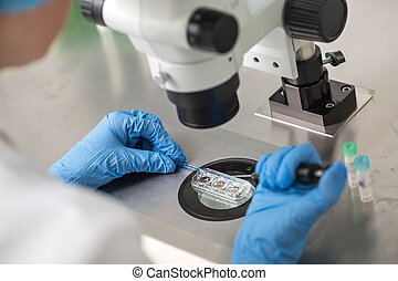Checking result of in vitro fertilization