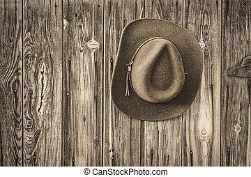 felt cowboy hat on a rustic barn wall
