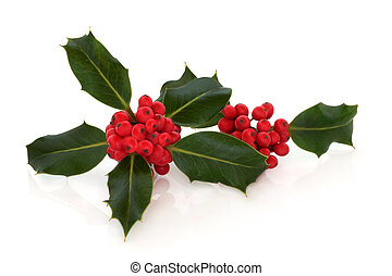Holly Berry Leaf Sprigs - Holly leaf sprigs with red...