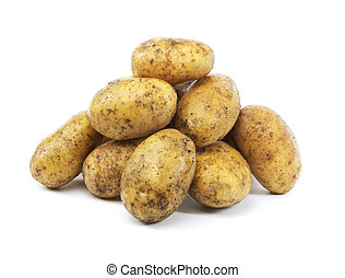 Potatoes - A Heap of harvested dirty potatoes on white