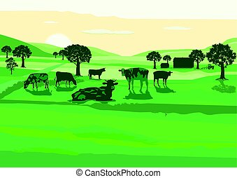 Rinder am Morgen.eps - Agriculture with cows on the pasture...