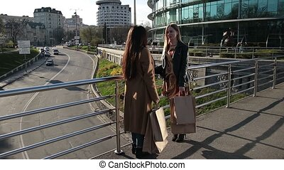 Attractive girlfriends communicating on bridge - Two...