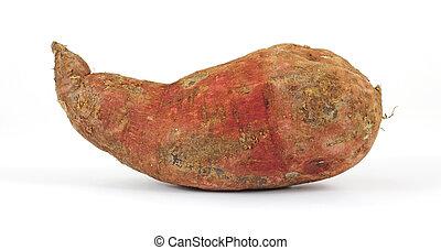 Fresh batata - A fresh large batata on a white background.