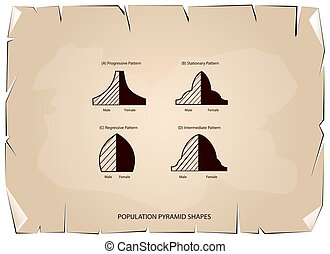 Four Types of Population Pyramids on Old Paper Background -...