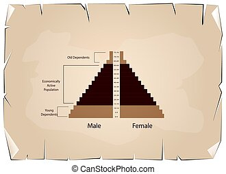 Detail of Population Pyramids Graphs Depend on Age -...