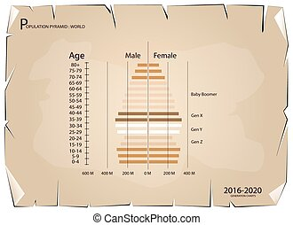 2016-2020 Population Pyramids Graphs with 4 Generation -...
