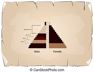 The Population Pyramids Graphs with 4 Generation -...