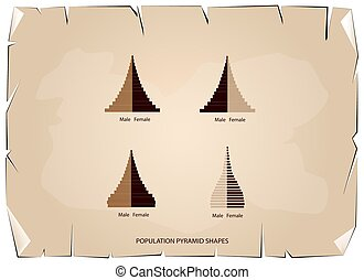 The 4 Types of Population Pyramids Graphs - Age Structure...
