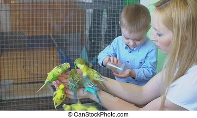 Mother and Son Feeding the Parrots