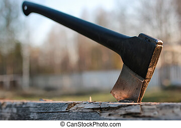 axe in wood outdoor - various objects of the spring season...
