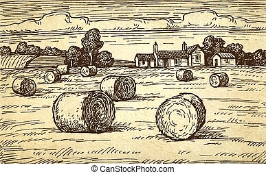 Rural landscape with hay bales. - Field with haystacks....