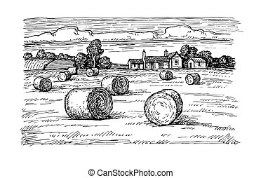 Field with haystacks - Rural landscape with hay bales. Wheat...