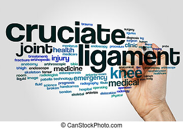 Cruciate ligament word cloud concept on grey background.