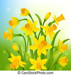 Spring Post Card With Narcissus Gradient Mesh, Vector...