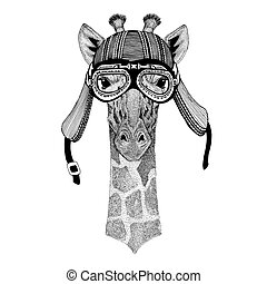 Camelopard, giraffe Hand drawn image of animal wearing...