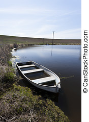 Row boat in a pond. - An old row boat partly filled with...