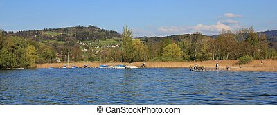 Spring scene in Zurich - Shore of lake Pfaffikon. Spring...