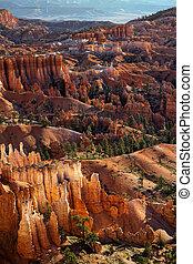 Sunlit Hoodoos in Bryce Canyon
