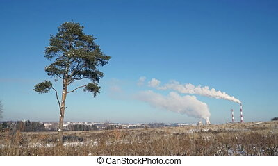 Pollution of the environment. Smoke from factory chimneys and lonely tree in a field