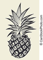 Pineapple fruit Hand drawn - Pineapple fruit. Hand drawn...