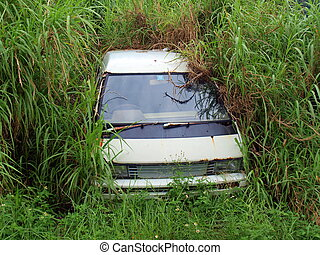 Neglected Car - Overgreen Leaves and shoots almost cover a...