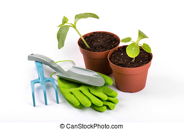 gardening equipment and potted plants isolated on white background