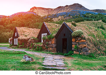 houses - Traditional houses with grass on roof in Iceland