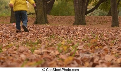 Three years old boy playing with ball in autumn leaves.