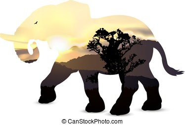 Silhouette of elephant