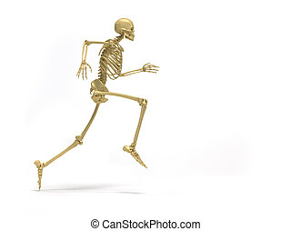 Skeleton running - Human skeleton running - 3d render...